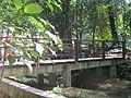 Puente en Agua Azul, Chiapas. - panoramio.jpg