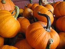 pumpkinの意味 使い方 英和辞典 weblio辞書