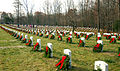 Quantico-National-Cemetery-Wreaths-Dec-6-08.jpg