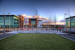 Quorum Business Park, redboxdesign, Critical Tortoise.jpg
