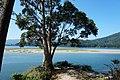 Ría de Ortigueira, Galicia 04.jpg