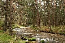 Río Eresma (2 de mayo de 2015, parque natural Sierra Norte de Guadarrama) 04.jpg