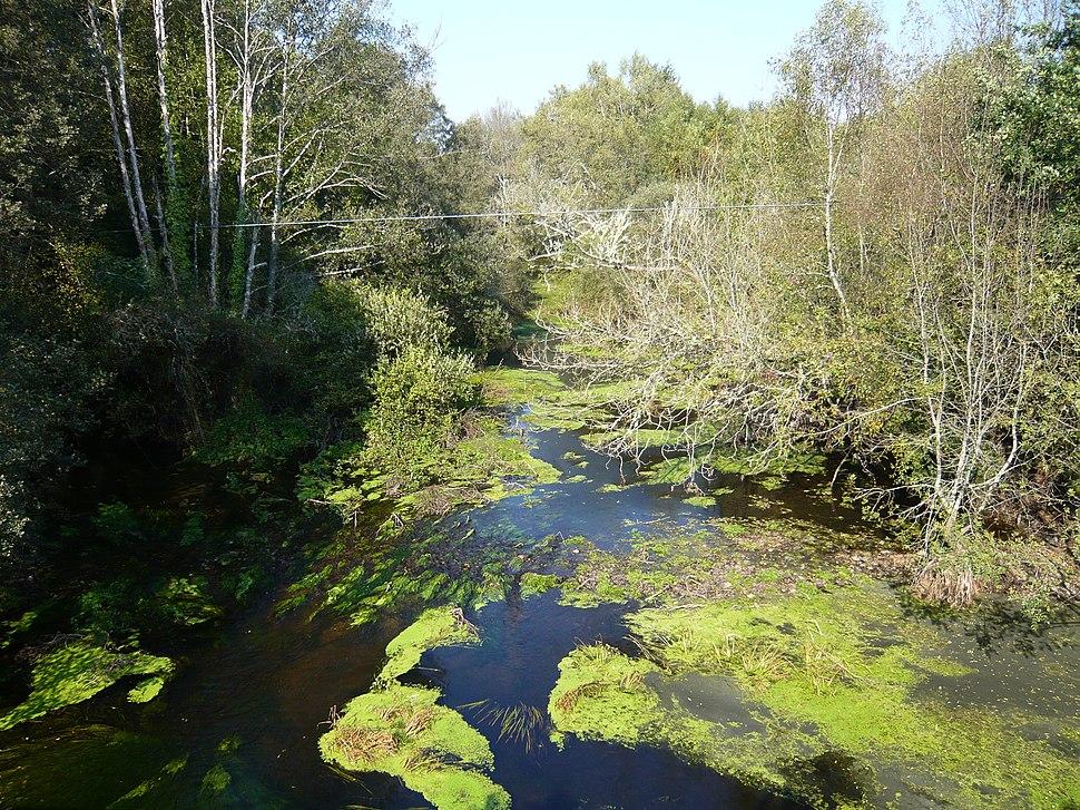 Río Ladra cerca de Baamonde (Lugo, Galicia, España) 01