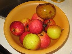 Různá jablka v misce.jpg