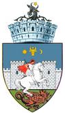 ROU SV Suceava CoA.png