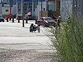 Recumbent tricycle on Queen's Quay, 2016-08-07 (1).JPG - panoramio.jpg
