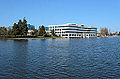 Redwood Shores Lagoon February 2013 001.jpg