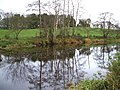 Reflections on the Camowen, Donaghanie - geograph.org.uk - 621606.jpg