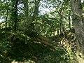 Rhosgoch Motte - geograph.org.uk - 36502.jpg