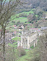Rievaulx Abbey from above.jpg