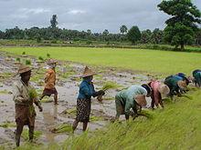 Burmese women myanmar girls