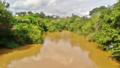 Rio Jaguari.png