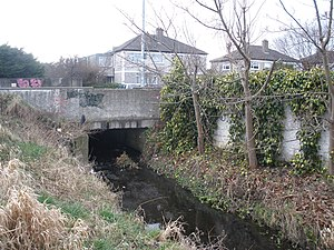 River Poddle - River Poddle emerging from under Templeville Road.