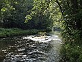 River Dart - geograph.org.uk - 532481.jpg
