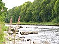 River Dee and Blackhall Forest - geograph.org.uk - 887801.jpg