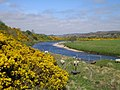 River Halladale - geograph.org.uk - 428020.jpg