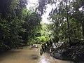 River in Khao Sok National Park 2.jpg