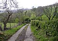 Road to Bwlch-gwyn farm - geograph.org.uk - 414686.jpg