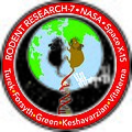 Rodent Research-7 Mission Patch.jpg