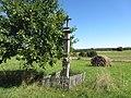 Rokiškio kaimiškoji sen., Lithuania - panoramio (58).jpg