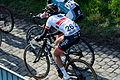 Ronde van Vlaanderen 2015 - Oude Kwaremont (16867265680).jpg