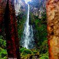 Rota das cachoeiras em Corupá (sc).jpg