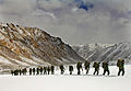Royal Marines of 42 Commando trudge through deep snow during Exercise Himalayan Warrior MOD 45147580.jpg