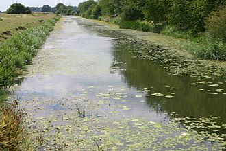 Royal Military Canal - A view over the canal near Rye