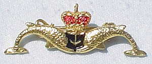 Submarine Warfare insignia - Royal Navy Submarine Service dolphin badge