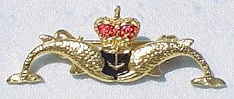 Submarine Warfare insignia - Royal Navy Submarine Service dolphin badge