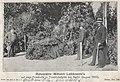 Ruhestätte Wilhelm Liebknecht, August 1900.jpg