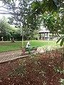 S.m.garden (3).jpg