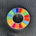 SDGs pin badge.jpg