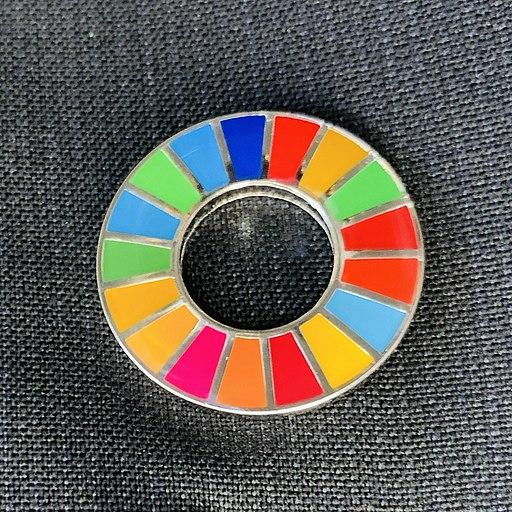 SDGs pin badge