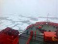 SG's Arctic Voyage.jpg