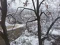 SNOW SILENCE.jpg