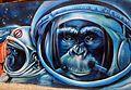 Sabadell - Graffiti 07.JPG