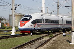 October Railway - The Sapsan high speed train on the way from Moscow to St. Petersburg
