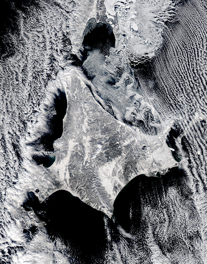 Satellite image of Hokkaido, Japan in January 2003.jpg