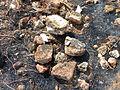 Scattered Brickbats at Grandhasiri Buddhist site 02.JPG