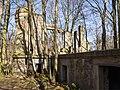 Schloss Dwasieden Ruinen 2016.jpg