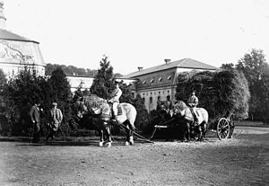Rhenish German Coldblood - Rhenish German Coldbloods pulling a hay wain at Schloss Wickrath in about 1900