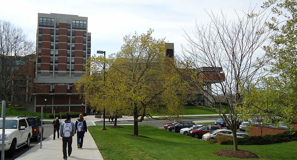 University Of Rochester Natural Sciences