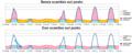 Settimanale Net Metering.png
