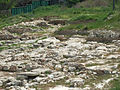 Sevastopol Strabon's Khersones antique greek settlement-28.jpg