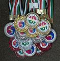 Shaolin Eagles Institute Medals in Kurdistan Championships.JPG