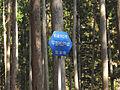 Shitara town road route 143.jpg