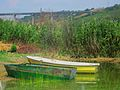 Shore with boats on the lake Mladost , Veles.JPG