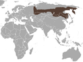 Siberian Large-toothed Shrew area.png