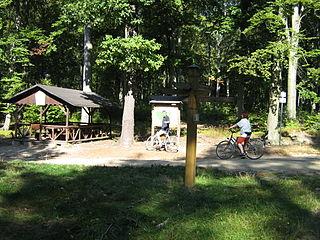 Düben Heath landscape in Saxony and Saxony-Anhalt, Germany